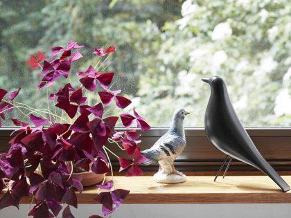 Vitra House Bird